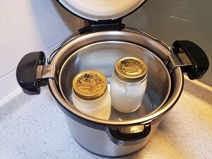 homemade yogurt with a thermal cooker