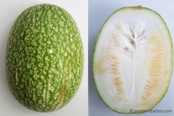 shark's fin melon
