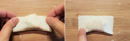fold wonton into half